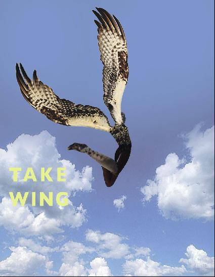takewing